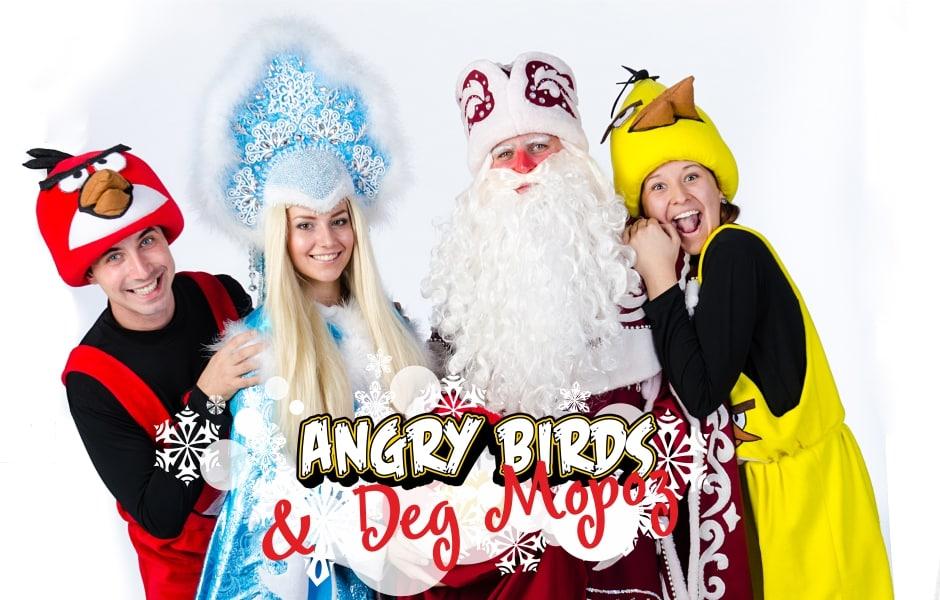 angry-birds-i-ded-moroz_2